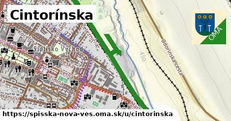 ilustračný obrázok k Cintorínska, Spišská Nová Ves
