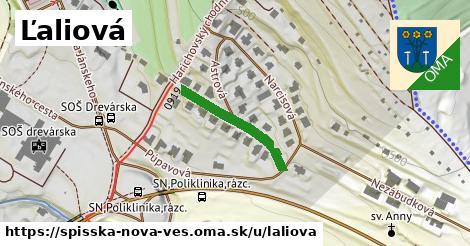 ilustrácia k Ľaliová, Spišská Nová Ves - 211m