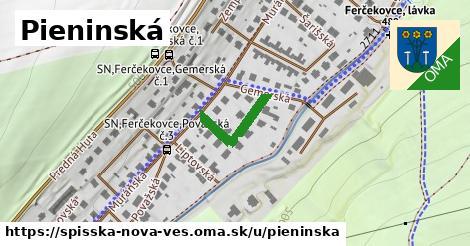 ilustrácia k Pieninská, Spišská Nová Ves - 159m