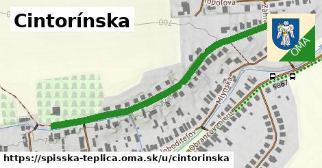 ilustrácia k Cintorínska, Spišská Teplica - 565m