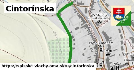 ilustrácia k Cintorínska, Spišské Vlachy - 482m