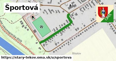 ilustrácia k Športová, Starý Tekov - 308m