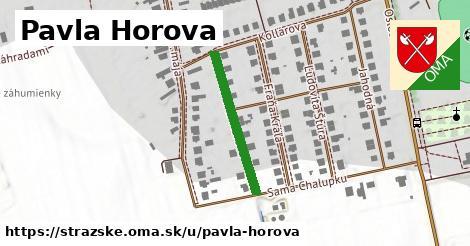 ilustrácia k Pavla Horova, Strážske - 237m