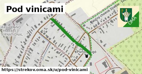 ilustrácia k Pod Vinicami, Strekov - 401m