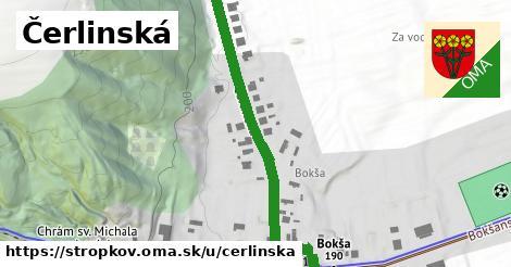 ilustrácia k Čerlinská, Stropkov - 487m