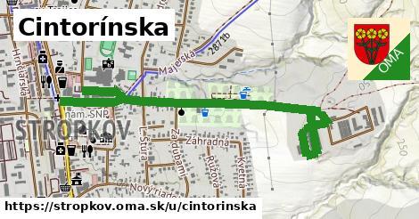 ilustračný obrázok k Cintorínska, Stropkov