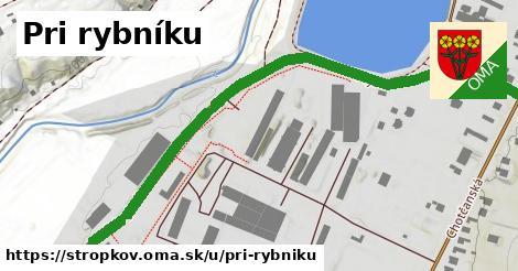 ilustrácia k Pri rybníku, Stropkov - 0,89km
