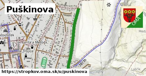 ilustrácia k Puškinova, Stropkov - 617m