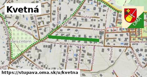 ilustrácia k Kvetná, Stupava - 259m