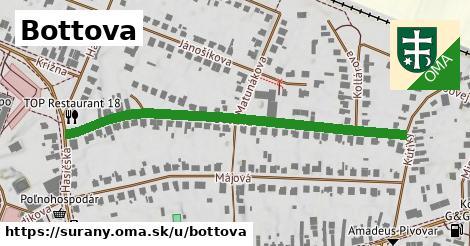 ilustračný obrázok k Bottova, Šurany