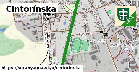 ilustrácia k Cintorínska, Šurany - 1,19km