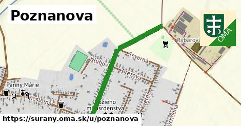 ilustračný obrázok k Poznanova, Šurany