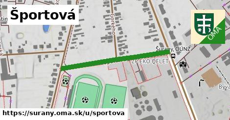 ilustrácia k Športová, Šurany - 359m