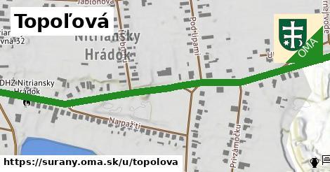 ilustrácia k Topoľová, Šurany - 0,80km