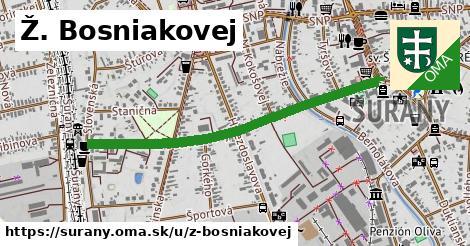 Ž. Bosniakovej, Šurany