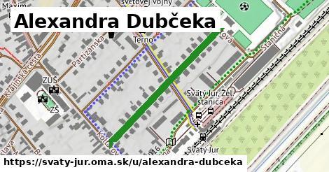 ilustrácia k Alexandra Dubčeka, Svätý Jur - 365m