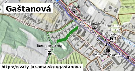 ilustrácia k Gaštanová, Svätý Jur - 147m