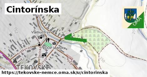 ilustrácia k Cintorínska, Tekovské Nemce - 167m