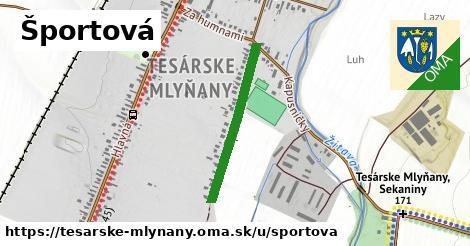 ilustrácia k Športová, Tesárske Mlyňany - 524m