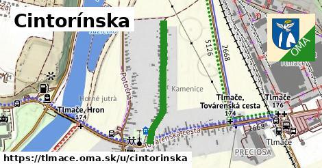 ilustrácia k Cintorínska, Tlmače - 586m