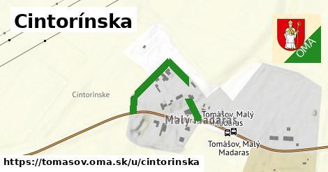 ilustrácia k Cintorínska, Tomášov - 267m