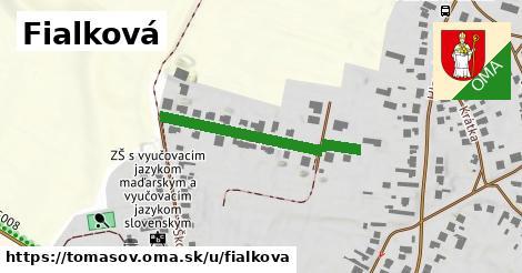 ilustrácia k Fialková, Tomášov - 301m