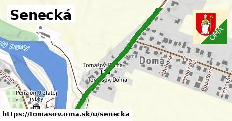 ilustrácia k Senecká, Tomášov - 460m