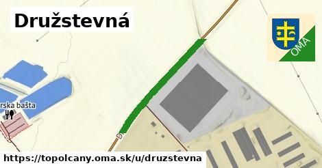 ilustrácia k Družstevná, Topoľčany - 285m