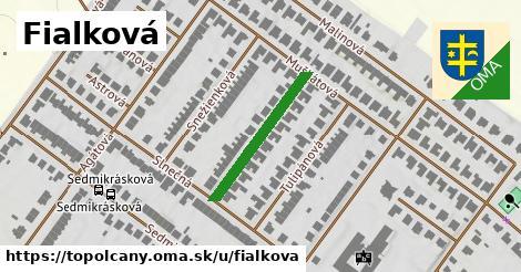ilustrácia k Fialková, Topoľčany - 227m