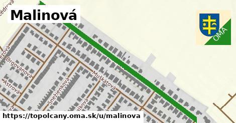 ilustrácia k Malinová, Topoľčany - 616m