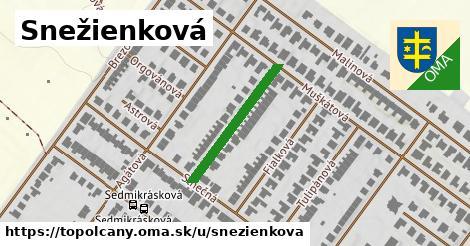 ilustrácia k Snežienková, Topoľčany - 229m