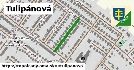 ilustrácia k Tulipánová, Topoľčany - 228m
