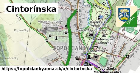 ilustrácia k Cintorínska, Topoľčianky - 620m
