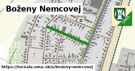 ilustračný obrázok k Boženy Němcovej, Tornaľa