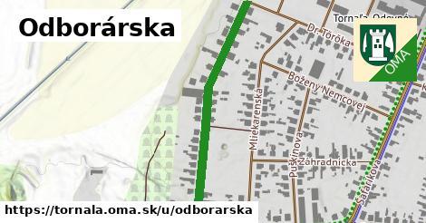ilustrácia k Odborárska, Tornaľa - 419m