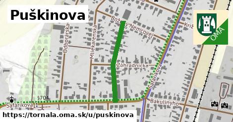 ilustrácia k Puškinova, Tornaľa - 262m