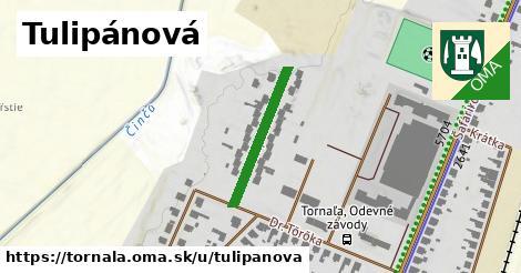 ilustrácia k Tulipánová, Tornaľa - 215m