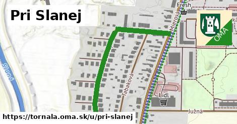 ilustrácia k Pri Slanej, Tornaľa - 526m