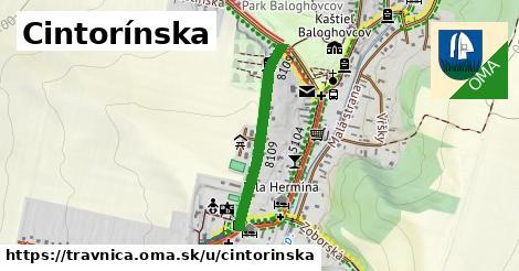 ilustrácia k Cintorínska, Trávnica - 551m