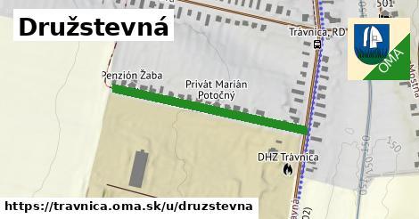 ilustračný obrázok k Družstevná, Trávnica
