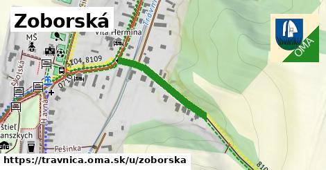 ilustrácia k Zoborská, Trávnica - 244m
