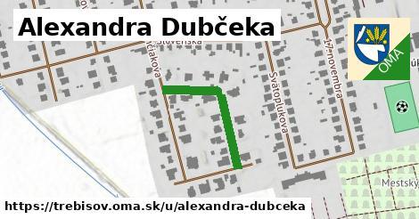 ilustrácia k Alexandra Dubčeka, Trebišov - 242m
