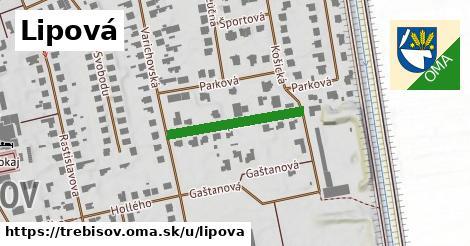 ilustrácia k Lipová, Trebišov - 219m