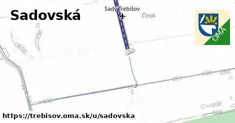ilustrácia k Sadovská, Trebišov - 7,3km
