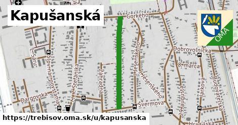 Kapušanská, Trebišov