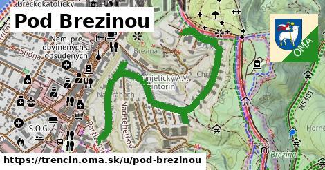 ilustračný obrázok k Pod Brezinou, Trenčín