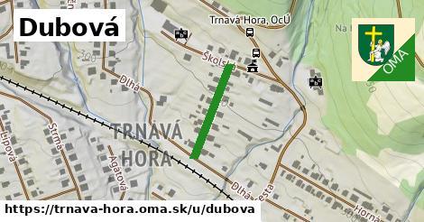 ilustrácia k Dubová, Trnavá Hora - 176m
