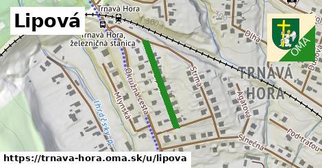 ilustrácia k Lipová, Trnavá Hora - 214m