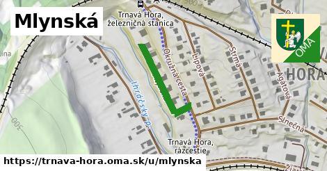 ilustrácia k Mlynská, Trnavá Hora - 216m