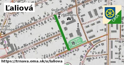 ilustrácia k Ľaliová, Trnava - 229m